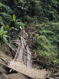 Collapsed Bridge in Jungle Caused by Monsoon Rains Photographic Print by Maria Stenzel