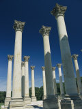 Corinthian Columns from the Us Capitol, Relocated to the Arboretum Photographic Print