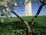Tourists and Blooming Cherry Trees at the Washington Monument Photographic Print by Medford Taylor