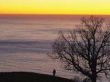 Sunset over Pacific, Oak Tree and Person Silhouetted Photographic Print by Rich Reid