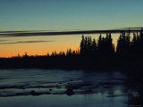 Sunset Behind Evergreen Trees Photographic Print by Norbert Rosing