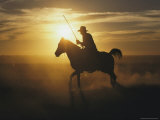 A Silhouetted Australian Cowboy at Twilight Photographic Print by Medford Taylor