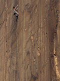 A Man Climbing the Concepcion Crack, Moab, Utah Photographic Print by Jimmy Chin
