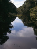 A Calm Waterway with Tree-Covered Banks Reflected in the Water Photographic Print by Tim Laman