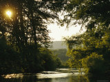 Sunset Above a Riparian Forest Bordering the Susquehanna River Photographic Print by Raymond Gehman