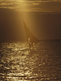 Windsurfing at Dusk Photographic Print