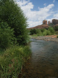 Cathedral Rock with Stream and Shrubs in Foreground Photographic Print by Todd Gipstein