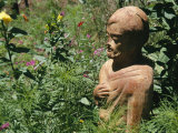 Monk Statue in Garden in Sutter Creek, Califoria Photographic Print by Gina Martin