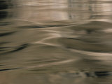 Close View of a Rivers Surface, Arizona Photographic Print by David Edwards
