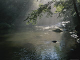 Morning Mist Lifts off the Tellico River Photographic Print by Stephen Alvarez
