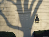 A Tree Casts its Shadow over a White Clapboard Building Photographic Print by Charles Kogod