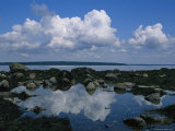 A Tidal Pool Reflects the Stark Beauty of Maines Rocky Coast Photographic Print by Stephen St. John