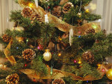 A Close View of a Decorated Christmas Tree Photographic Print by Joel Sartore
