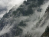 Mist Clings to the Cliffs of Tongass National Forest Photographic Print by Ralph Lee Hopkins