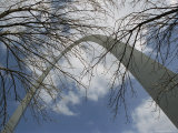 Skyward View of the Gateway Arch Through Leafless Tree Branches Photographic Print by Paul Damien
