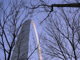 View of the Gateway Arch Through Leafless Tree Branches Photographic Print by Paul Damien