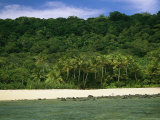 View of a Lush and Deserted Beach in the Fiji Islands Photographic Print by Tim Laman