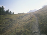 Hiking Trail outside Saint Moritz, Switzerland Photographic Print by Taylor S. Kennedy