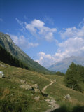 Hiking Trail in the Engadin Valley near Saint Moritz, Switzerland Photographic Print by Taylor S. Kennedy