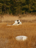 Watermens Boats and a Great Blue Heron in a Cordgrass Salt Marsh Photographic Print by Raymond Gehman