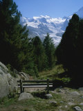 Bench on a Hiking Trail with a View of the Morteratsch Glacier Photographic Print by Taylor S. Kennedy
