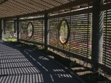 Patterns of Shadow and Sunlight on a Covered Garden Walkway Photographic Print by Paul Damien