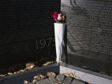 Bouquet of Roses Left by a Visitor to the Vietnam Memorial Photographic Print
