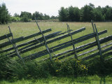 Rustic Fence Divides Fields on Gotland Island Photographic Print by Sisse Brimberg