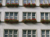 View of Flower-Decorated Windows in Munich Photographic Print by Taylor S. Kennedy