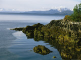 Algae-Covered Rocks, Snow-Covered Mountains Around Prince Willam Sound Photographic Print by Kate Thompson