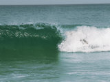 Surfer Is Hidden in the Foam of a Wave Photographic Print by Stephen Alvarez