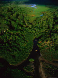 Aerial View of a Rain Forest Interrupted by Small Clearings Photographic Print by Michael Nichols