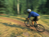 Man Mountain Biking along a Trail in the San Juan Mountains Photographic Print by Kate Thompson