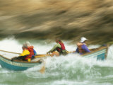 Whitewater Boating in a Dory on the Colorado River Photographic Print by Kate Thompson