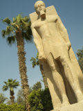 A Colossal Statue of Ramses II Photographic Print by Richard Nowitz