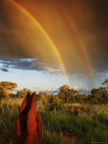 A Double Rainbow Over an Australian Grassland with Termite Mounds Photographic Print by Randy Olson
