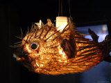 A Lantern Made from a Puffer Fish is Sold at a Flea Market Photographic Print by Richard Nowitz