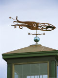 A Squid-Shaped Weather Vane Atop a Cupola Photographic Print by Darlyne A. Murawski