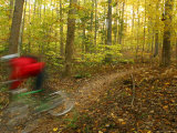 A Mountain Biker Rides Through a Forest in the Fall Photographic Print by Skip Brown
