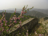 The Great Wall of China Near the Juyongguan Pass in Spring Fotoprint van Richard Nowitz
