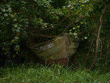 Overgrown Fishing Boat Abandoned in the Seaside Woods Stampa fotografica di John, Stephen St.