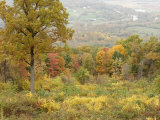Fall Color Graces a Valley View from an Overlook on Skyline Drive Photographic Print by Charles Kogod