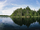 Pine Forest Reflected in a Lake Photographic Print by Heather Perry