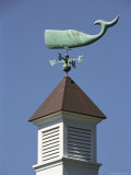 A Sperm Whale Weather Vane on a Roof Top Photographic Print by Darlyne A. Murawski