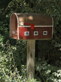 Mailbox Designed to Look Like a Barn Photographic Print by Darlyne A. Murawski