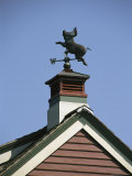 A Flying Pig Weather Vane Atop a Cupola Photographic Print by Darlyne A. Murawski
