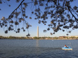 Boaters in Tidal Basin with Cherry Trees and Washington Monument Photographic Print by Charles Kogod