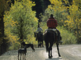 Cowboys and Their Dogs on the Mule Shoe Ranch Photographic Print by Joel Sartore