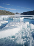 Ice Floes on a Glacial Lake Photographic Print by John Dunn/Arctic Light