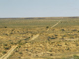 Vehicular Tracks Over Sand Dunes in Remote Harsh Outback Photographic Print